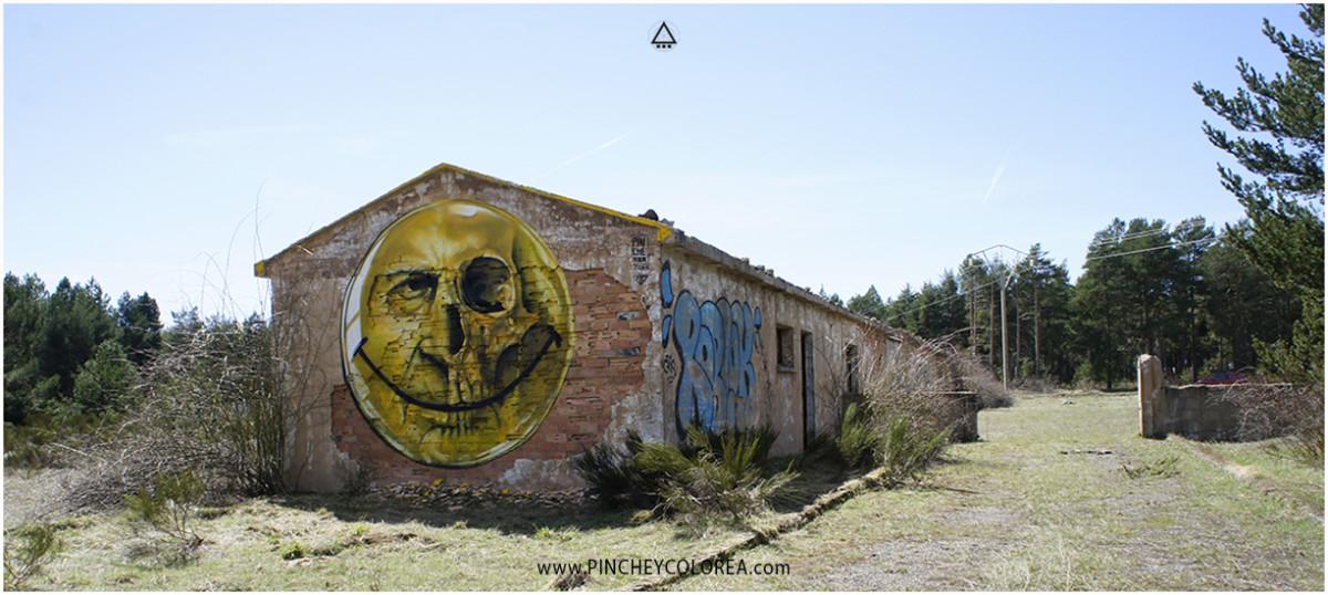 Graffiti cara feliz y craneo realizado por Pinche